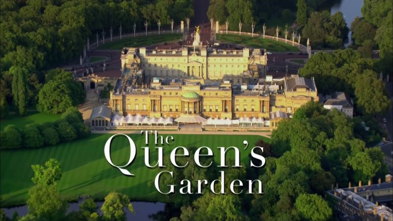 Read more about the article The Queen's Garden