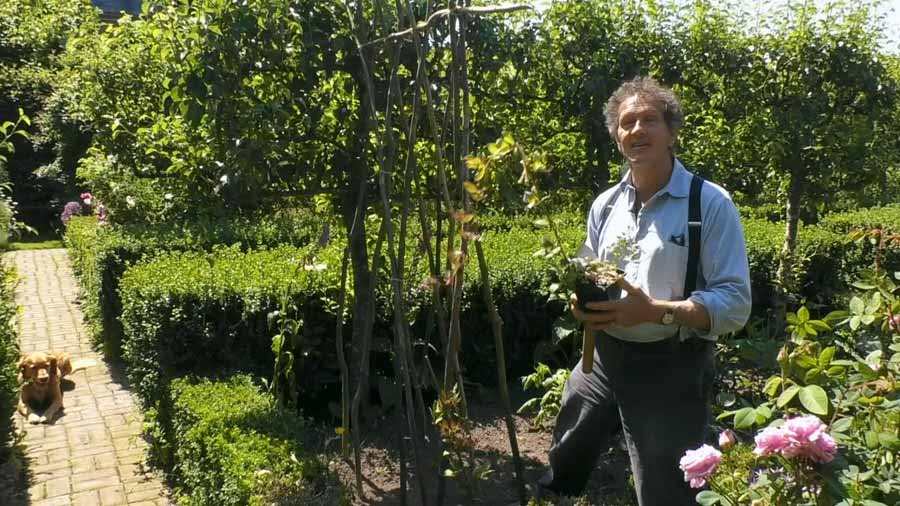 Read more about the article Gardeners World episode 16 2020