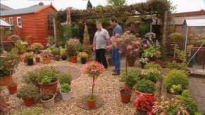 Read more about the article Gardeners World episode 27 2002