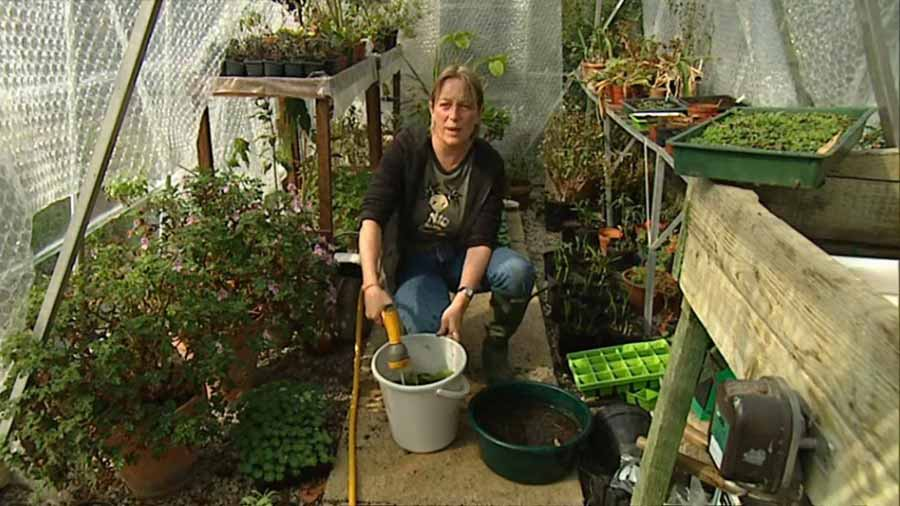 Read more about the article Gardeners World episode 28 2002