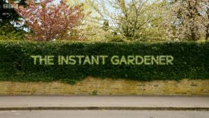 Read more about the article The Instant Gardener episode 10