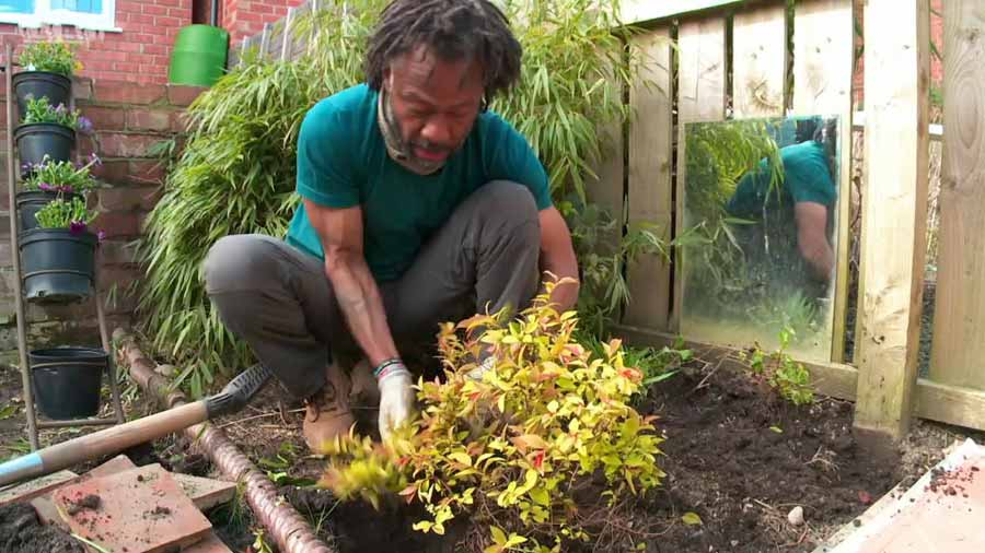 You are currently viewing The Instant Gardener episode 11