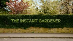 The Instant Gardener episode 3