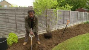 The Instant Gardener episode 4