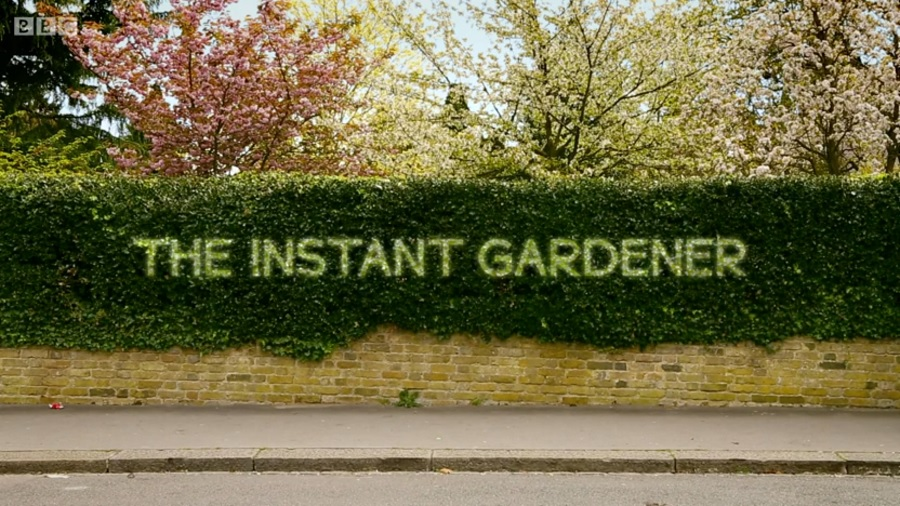 You are currently viewing The Instant Gardener episode 7