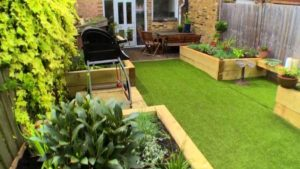 Read more about the article The Instant Gardener episode 8