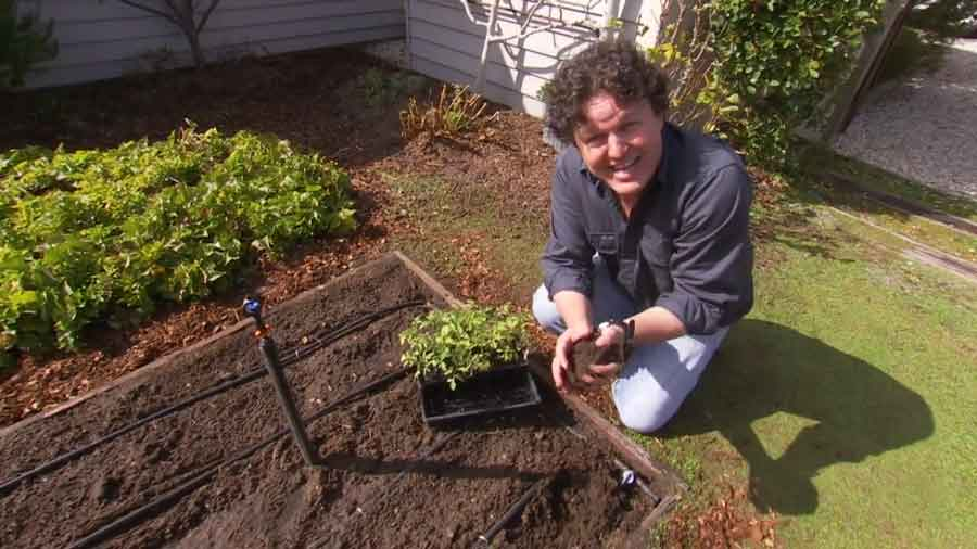 Read more about the article Gardening Australia episode 24 2020
