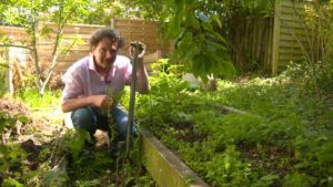 Read more about the article Gardening Together with Diarmuid Gavin episode 3