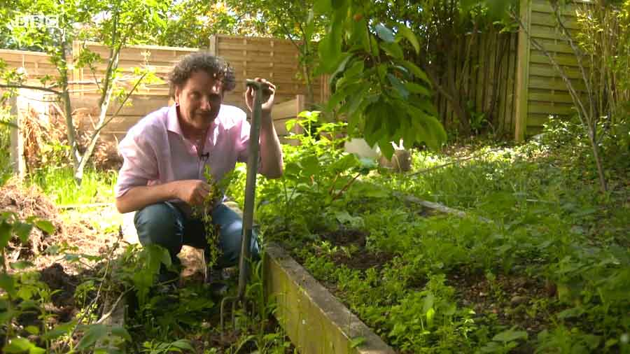 You are currently viewing Gardening Together with Diarmuid Gavin episode 3