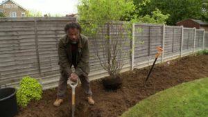 The Instant Gardener episode 13