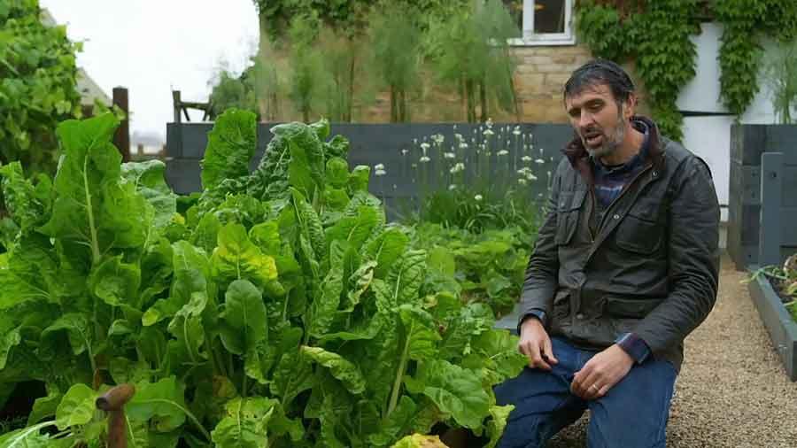 Gardeners World episode 25 2020