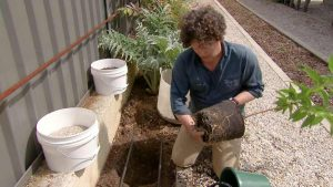 Read more about the article Gardening Australia episode 27 2020