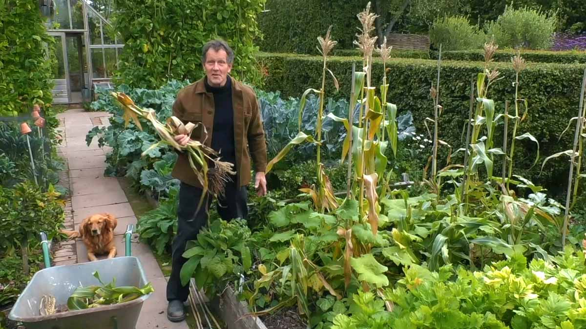 Gardeners World episode 30 2020