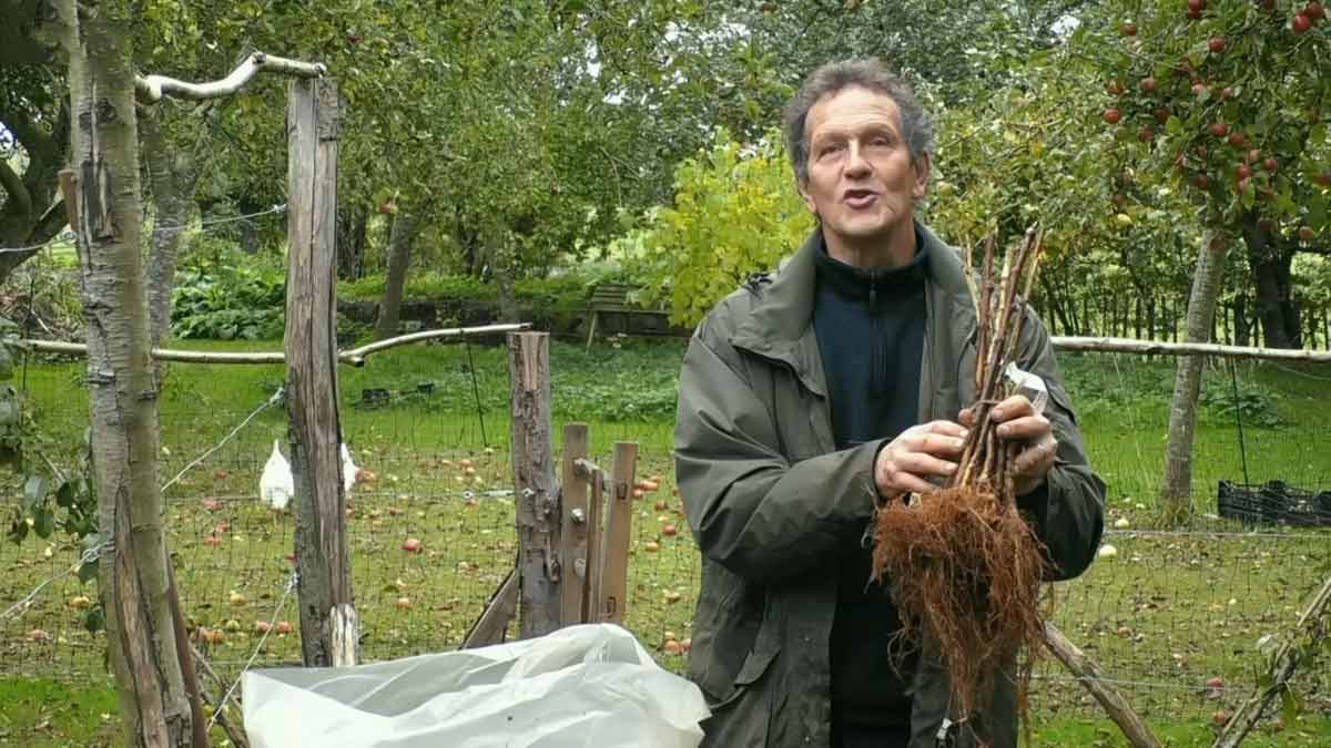 Gardeners World episode 32 2020
