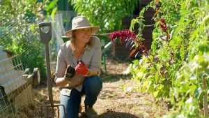 Read more about the article Gardening Australia episode 30 2020