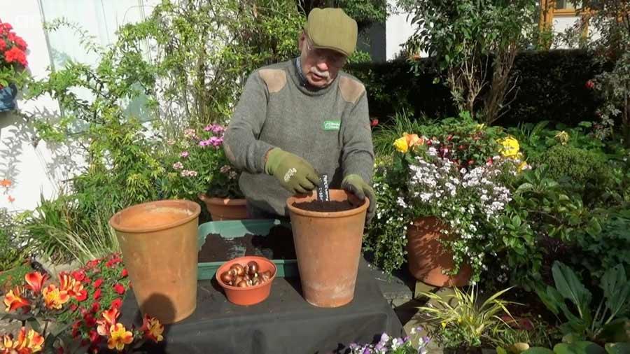 The Beechgrove Garden episode 25 2020