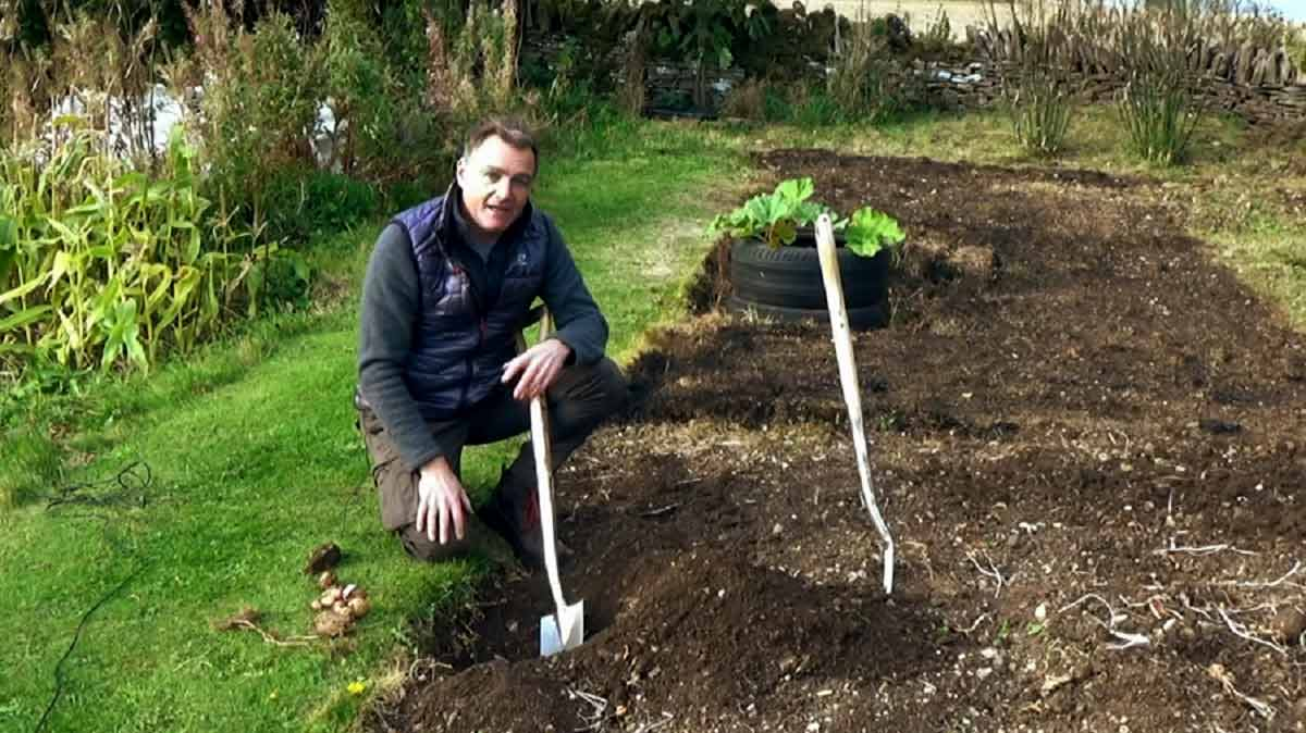 Read more about the article The Beechgrove Garden episode 26 2020