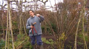 Read more about the article Gardeners' World episode 1 2013