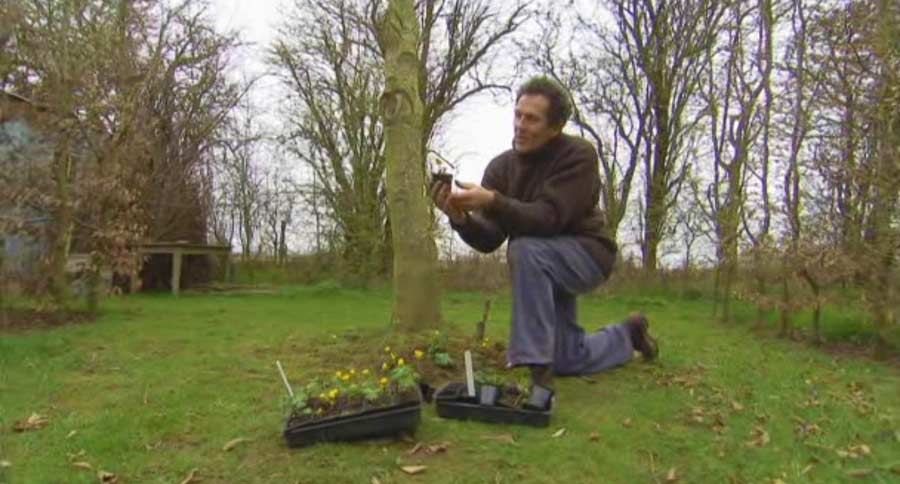 Gardeners' World episode 4 2013