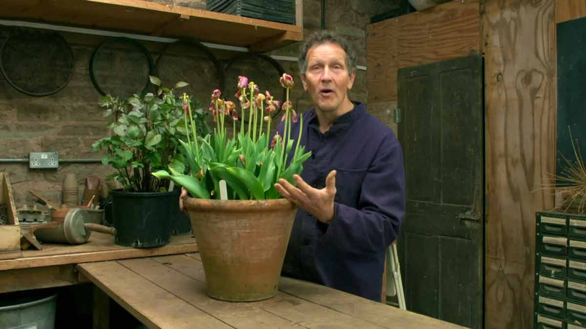 You are currently viewing Gardeners' World 2021 Winter Specials episode 3