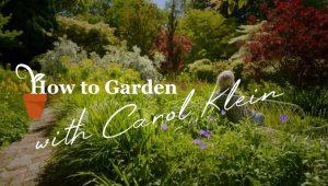 Gardening with Carol Klein episode 1