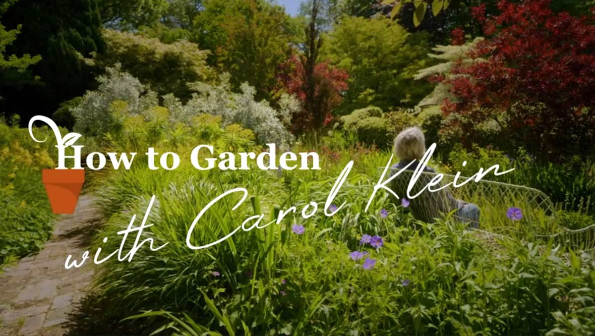 Gardening with Carol Klein episode 1