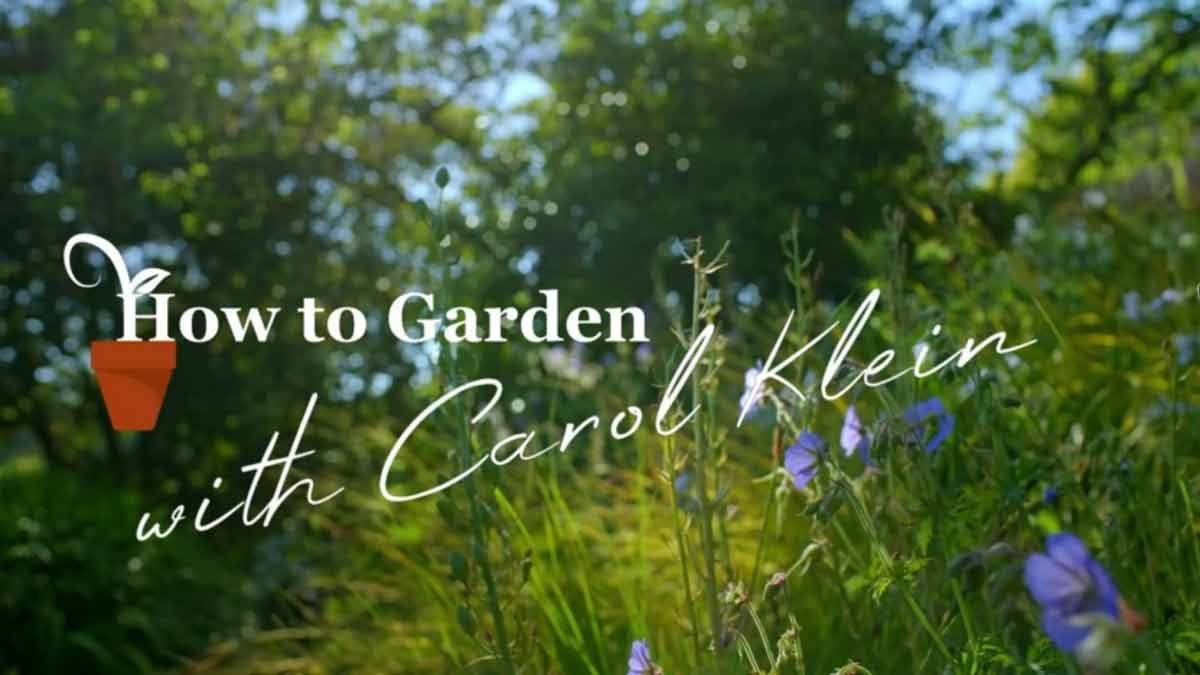 Gardening with Carol Klein episode 2