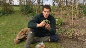 Monty Don's Real Gardens episode 14