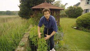 Monty Don's Real Gardens episode 7