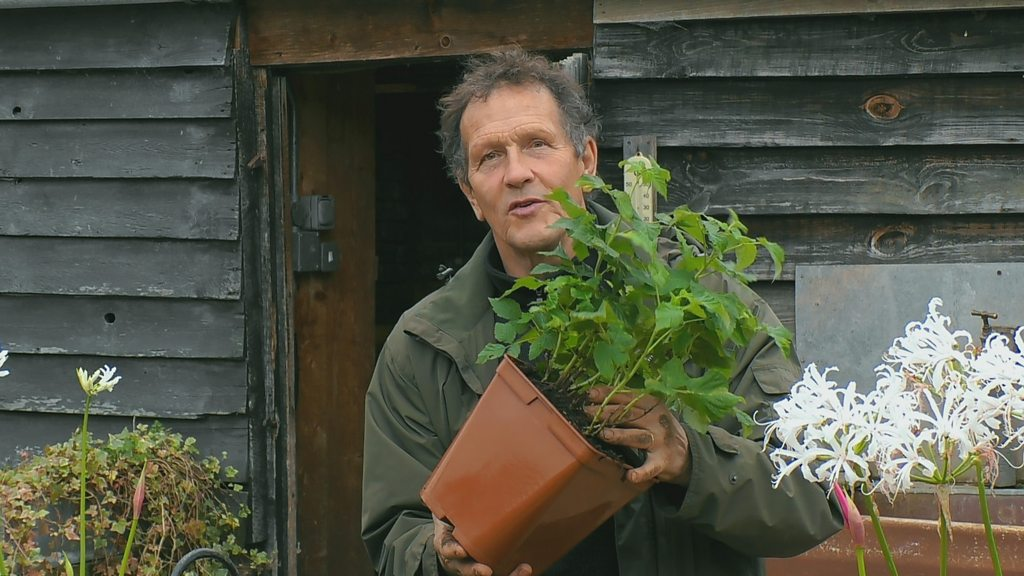 You are currently viewing Gardeners' World 2021 Winter Specials episode 4