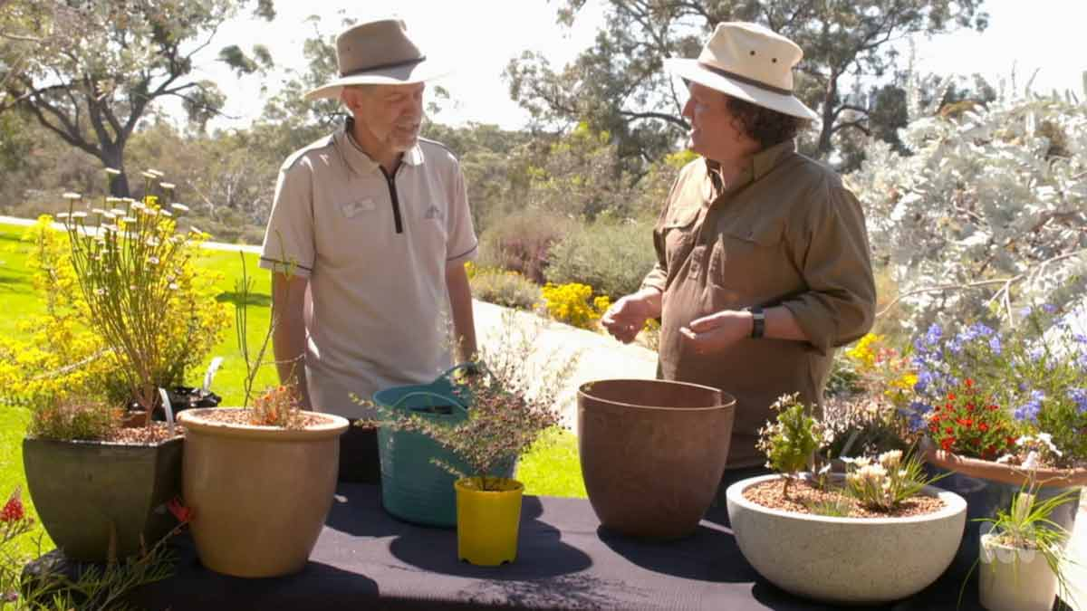 Gardening Australia episode 4 2021