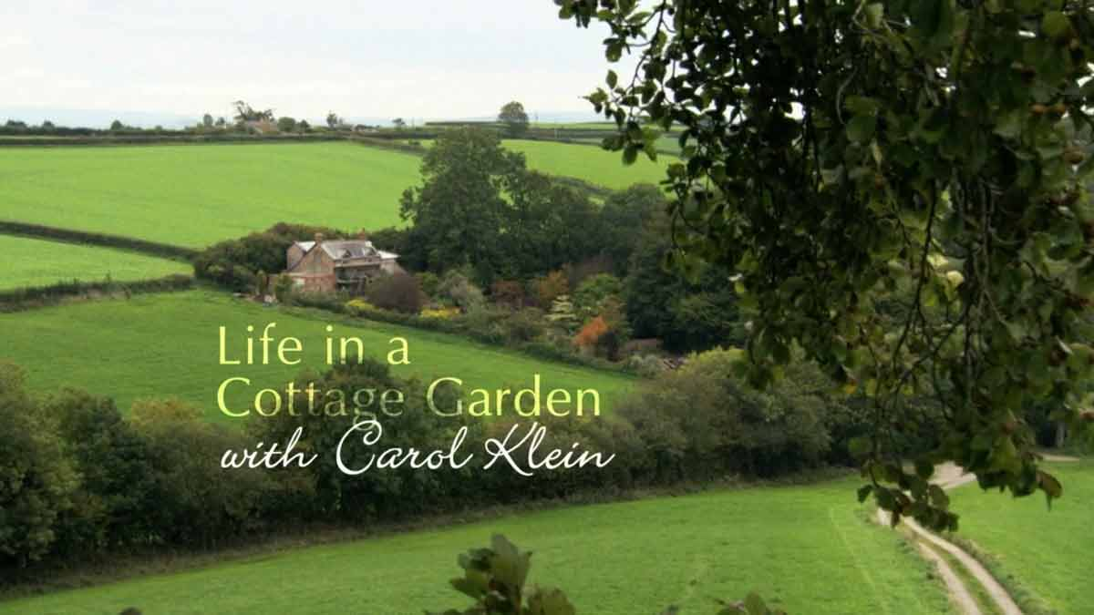 Life in a Cottage Garden with Carol Kleine episode 1 – Winter