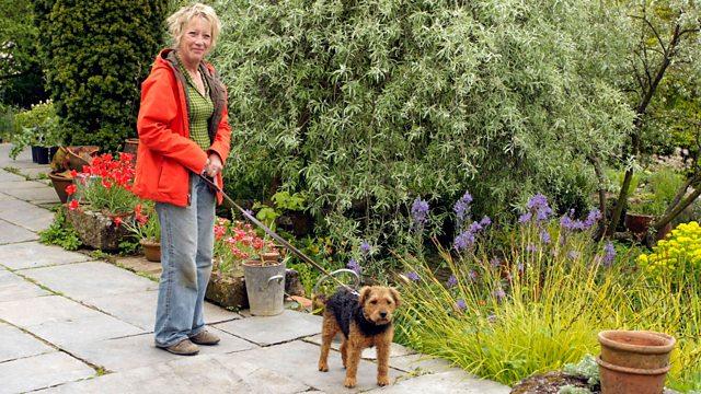 Life in a Cottage Garden with Carol Kleine episode 2 – Spring