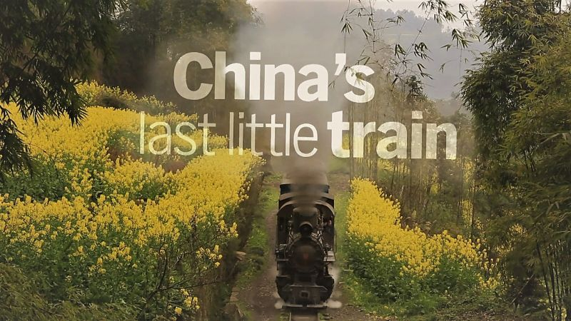 China's Last Little Train