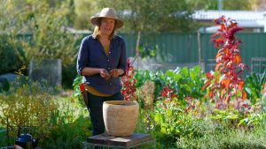 Read more about the article Gardening Australia episode 8 2021