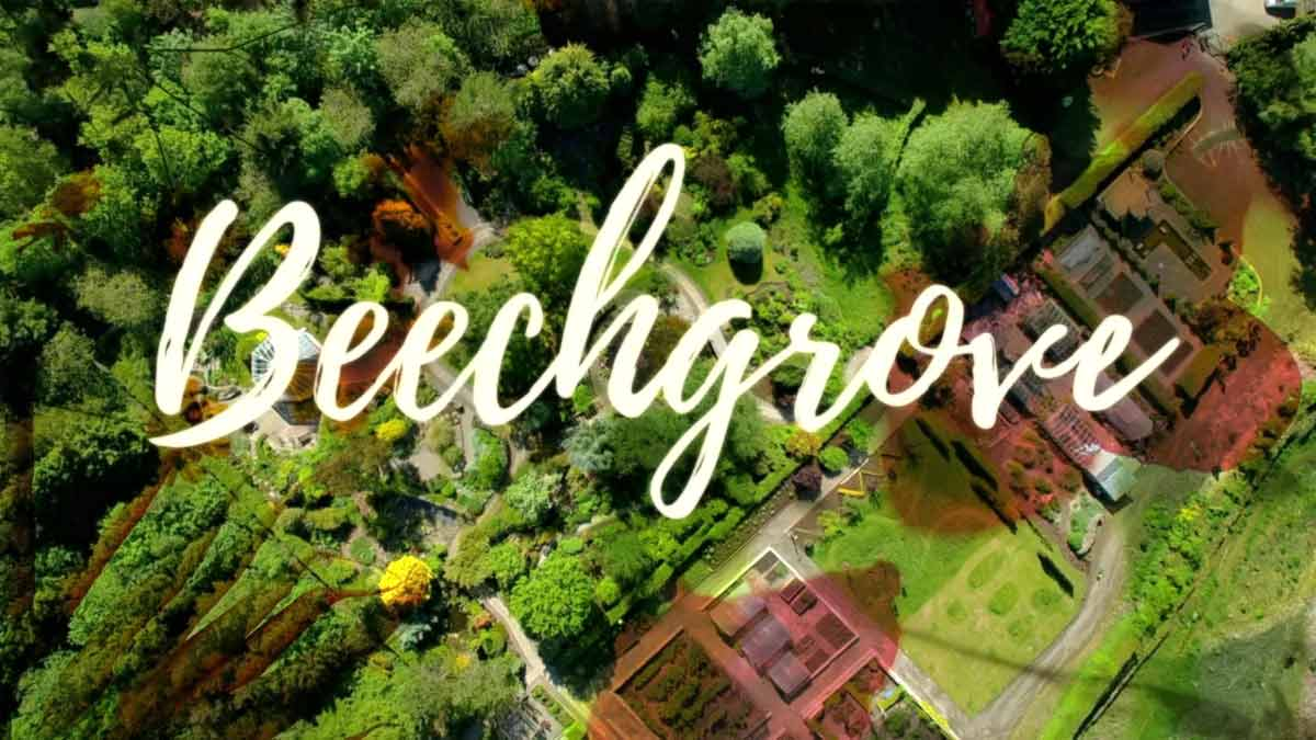 Read more about the article The Beechgrove Garden 2021 episode 1