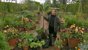 Read more about the article Gardeners' World 2021 episode 11