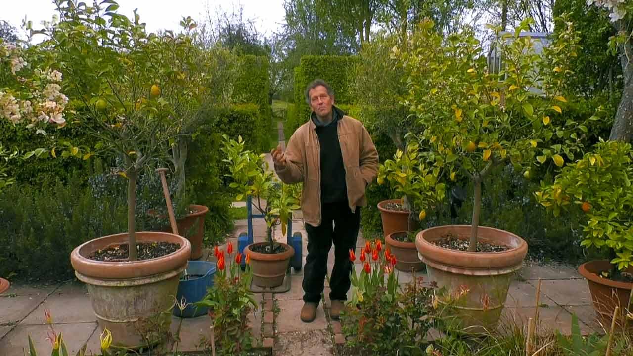 Gardeners' World 2021 episode 9
