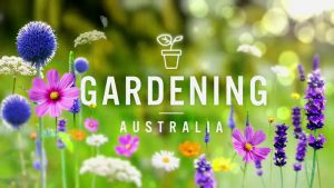 Read more about the article Gardening Australia episode 16 2021