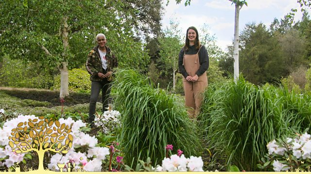 Read more about the article Gardeners' World 2021 episode 12