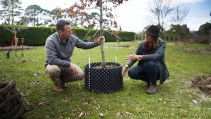 Read more about the article Gardening Australia episode 18 2021