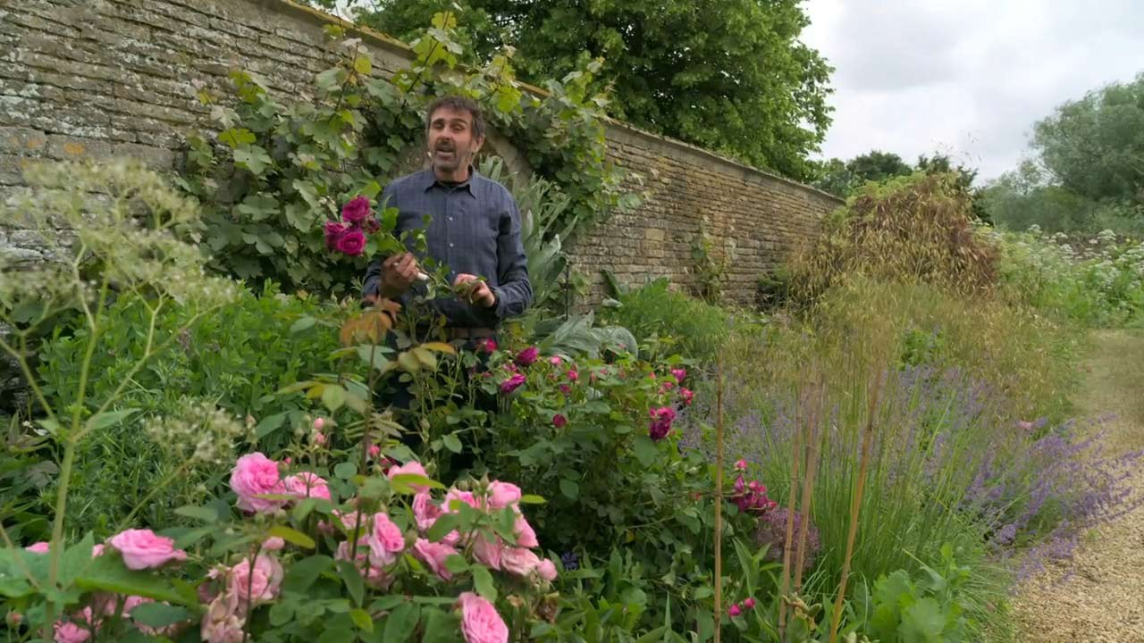 Read more about the article Gardeners' World 2021 episode 16