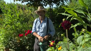 Read more about the article Gardeners' World 2021 episode 19