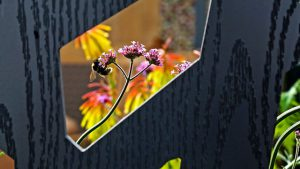 Read more about the article RHS Flower Show Tatton Park episode 1 2021