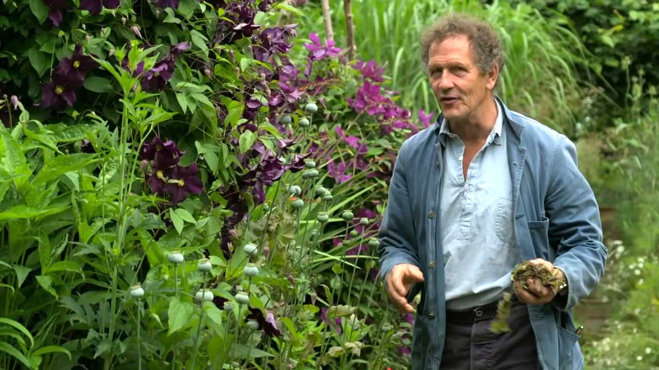Read more about the article Gardeners' World 2021 episode 20