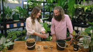 Read more about the article Gardening Australia episode 21 2021