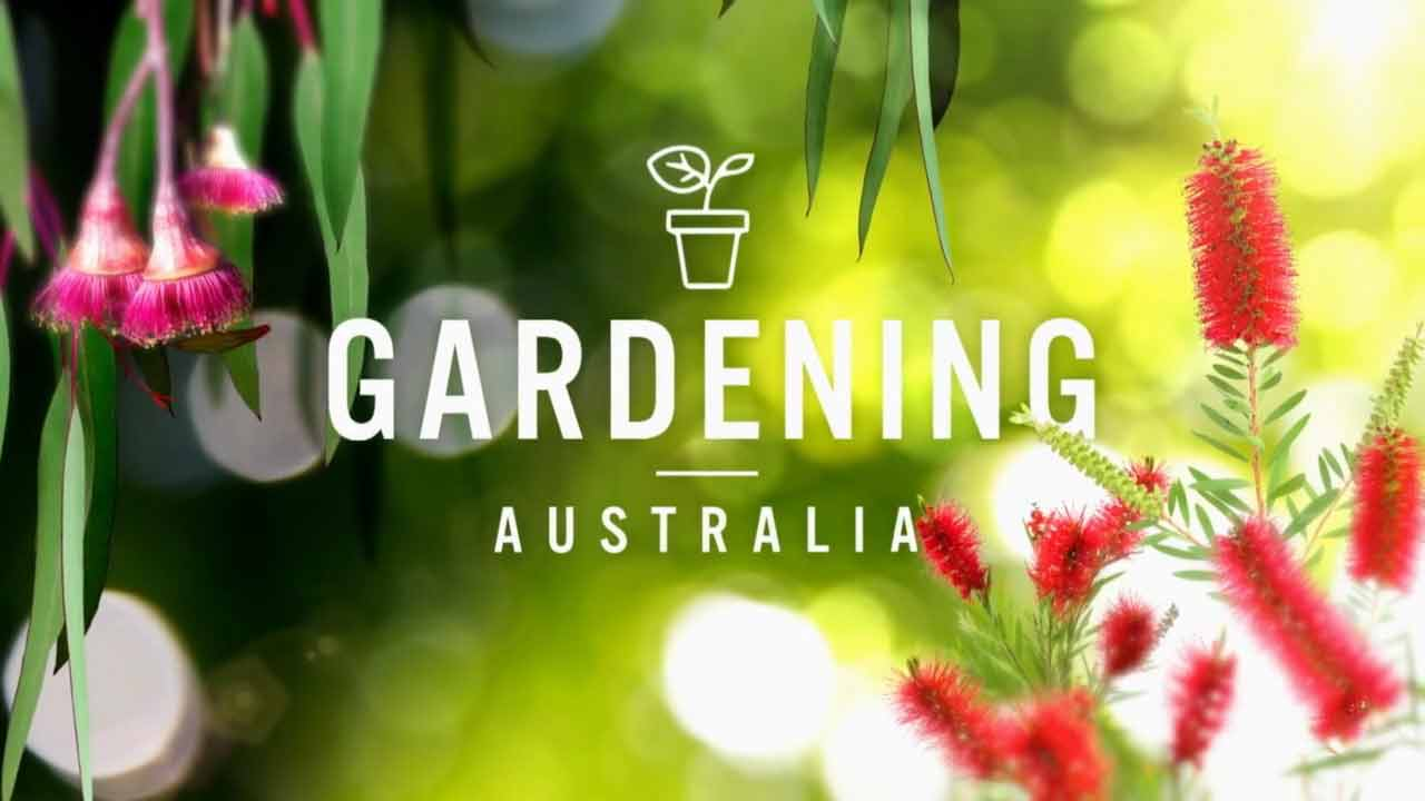 Read more about the article Gardening Australia episode 22 2021