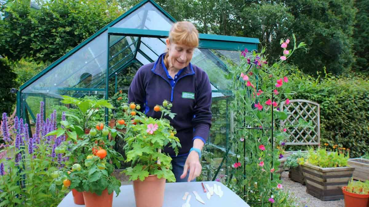 Read more about the article The Beechgrove Garden 2021 episode 22