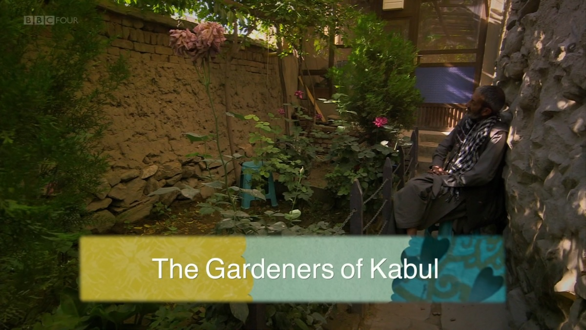 Read more about the article The Gardeners of Kabul