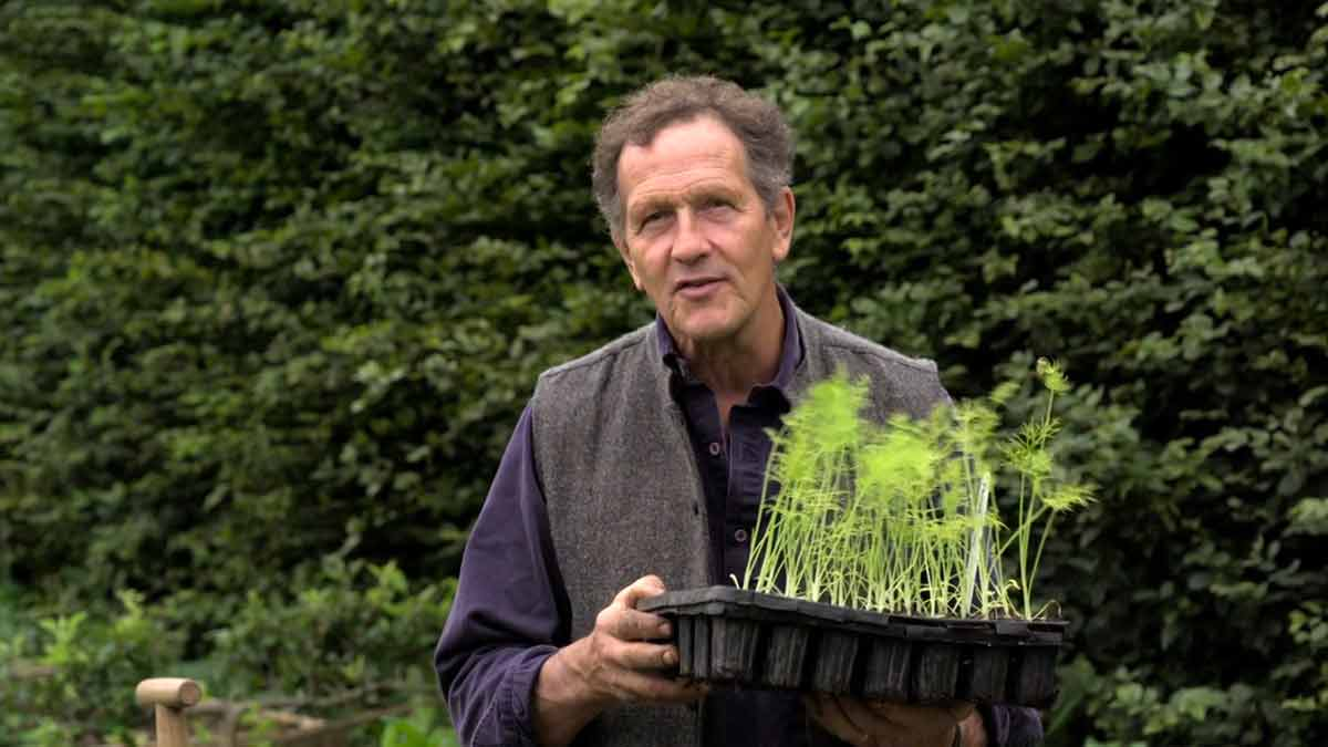 You are currently viewing Gardeners' World 2021 episode 24